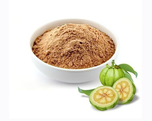Garcinia cambogia extracts manufacturers